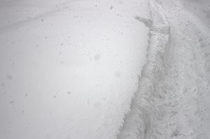 雪,重さ,積雪,冬